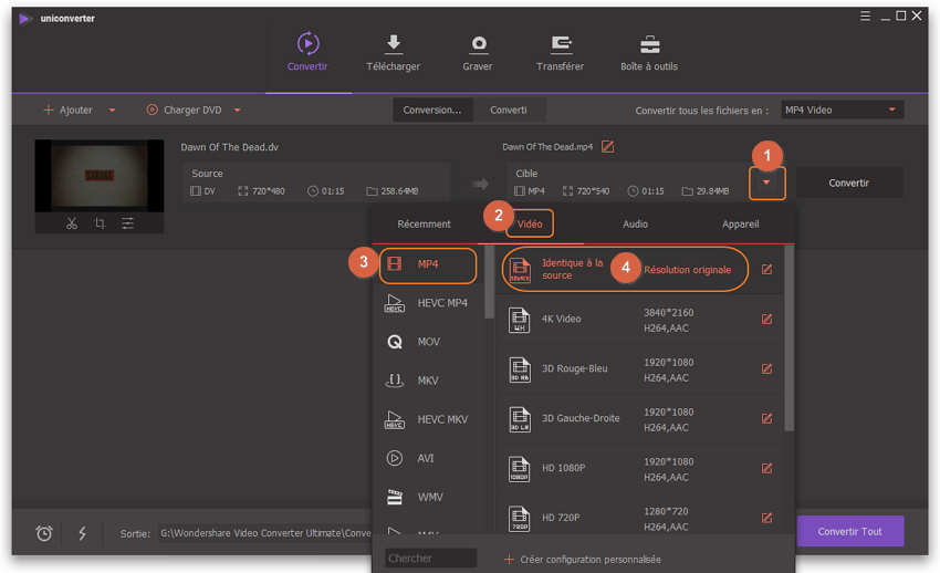 Convertir dv en MP4 - choisir mp4 comme format de sortie