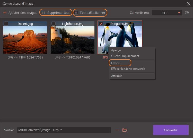 sélectionnez les images dont vous avez besoin pour convertir les formats