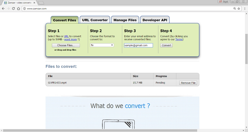 online MP4 to FLV converters - Zamzar