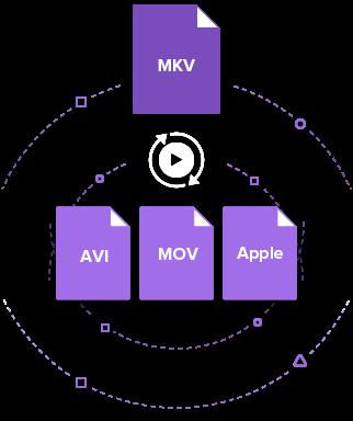 MKV to AVI converter on Mac
