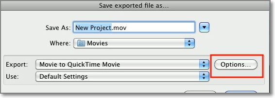 select the export options