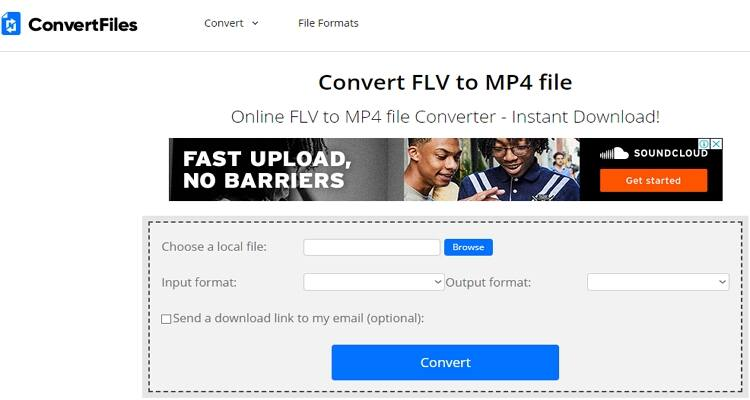 convert FLV file online-Convert Files