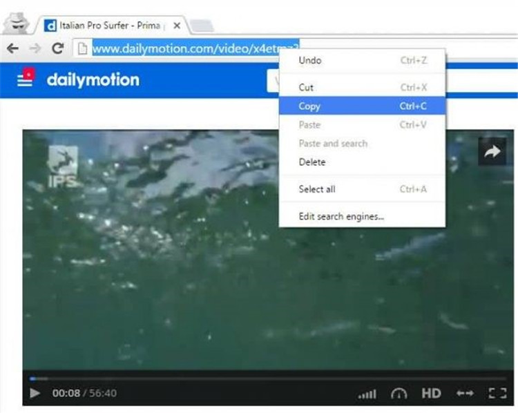 copie la url del vídeo de dailymotion