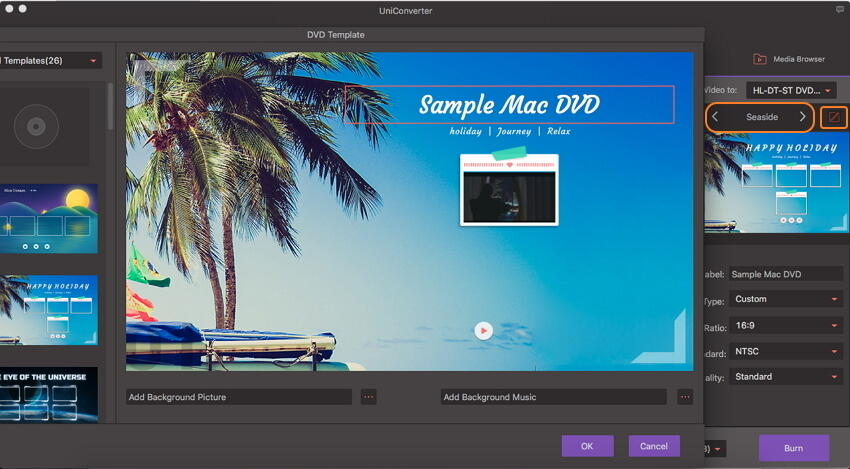 select DVD template and theme