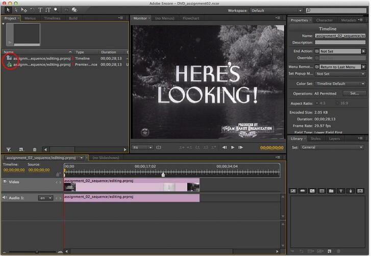 masterizza dvd con premiere
