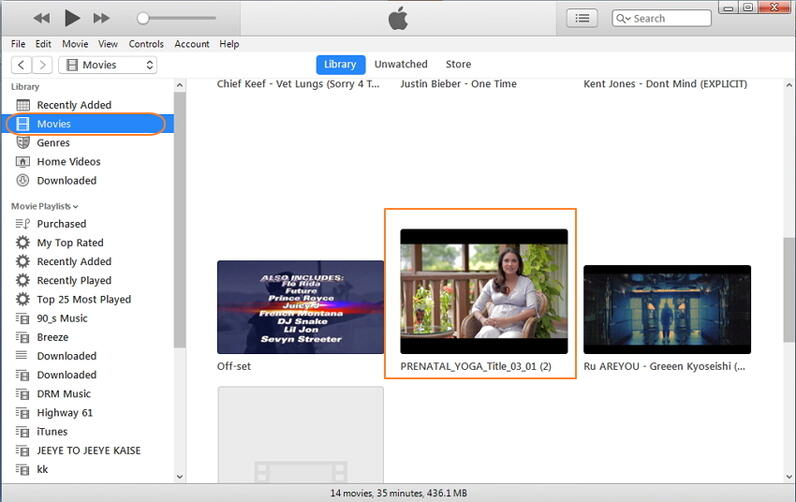 sync DVD video to iPad via iTunes