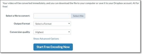 online flv converter-free encoding