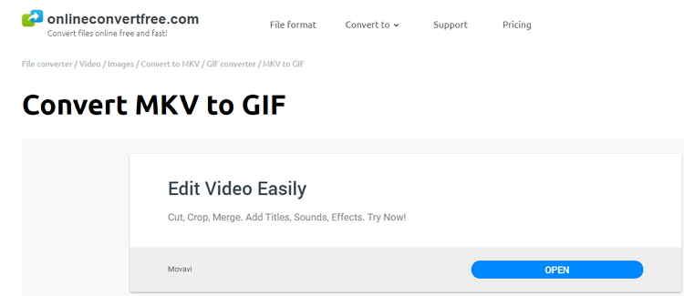 MKV to GIF Online Converter-Onlineconvertfree