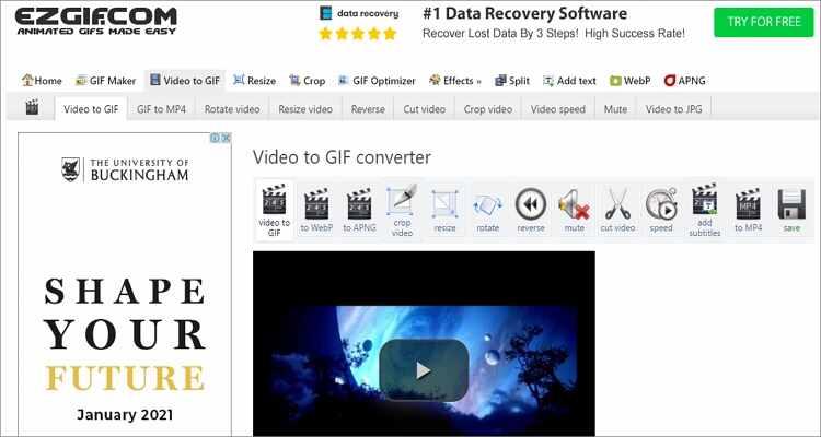 Convert WebM to GIF Online Free -Ezgif