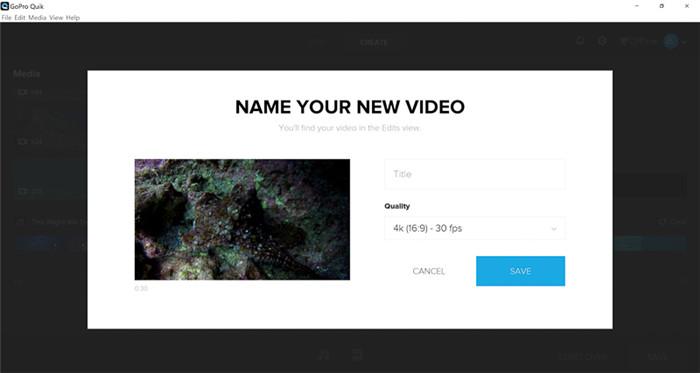 naming and saving video