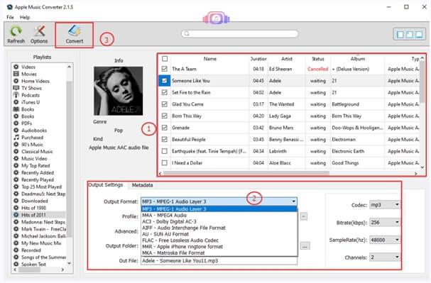 M4P player - TuneFab Apple Music Converter