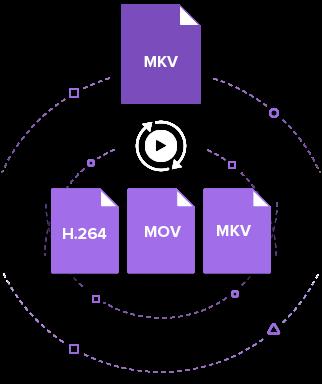 convert MKV Videos to H.264