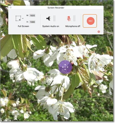 recording spotify video mac