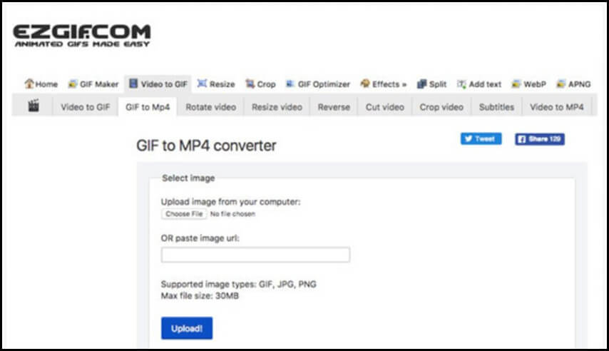 GIF in MP4 con Ezgift