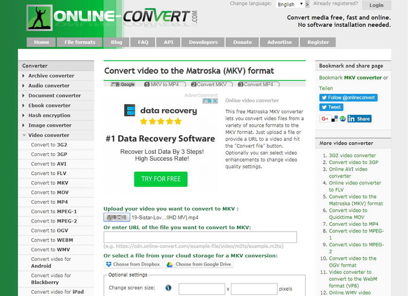 Convert MP4 to MKV online