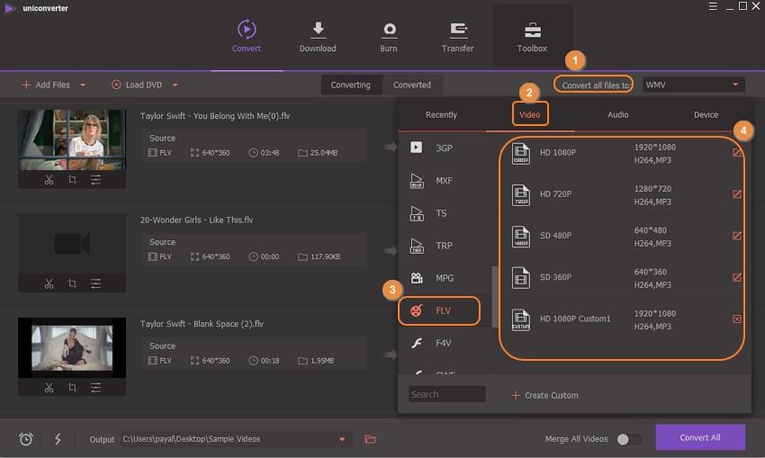 choose output format for FLV