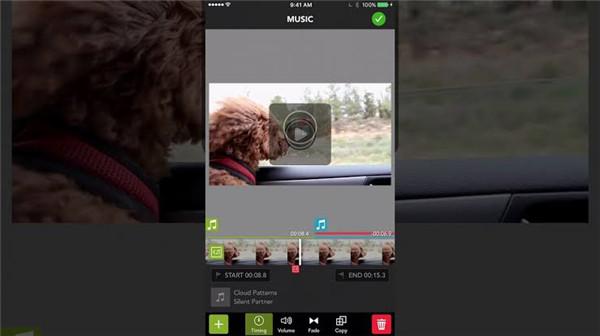 picplaypost video editor