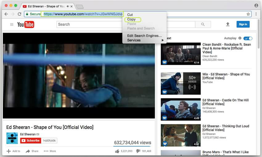 Find the YouTube video and copy the URL