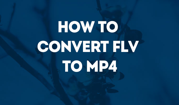 How to Convert FLV to MP4 with Zero Quality Loss?